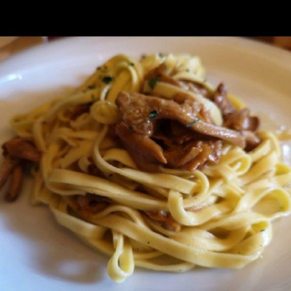 Hausgemachte Tagliolini-Nudeln mit Finferli Pilzensauce or Hirsch-Ragout